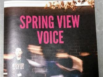 "This is an image of the ""Spring View Voice"" literary magazine website."